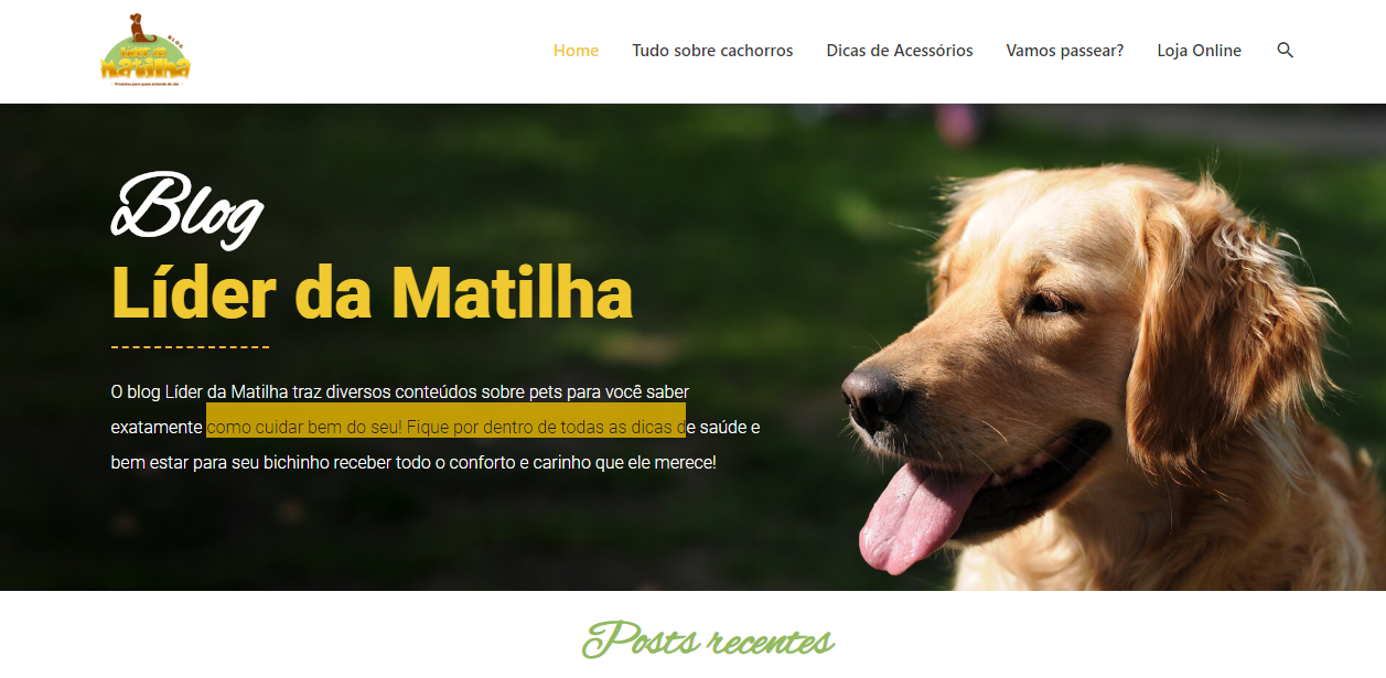 blog e-commerce pet shop